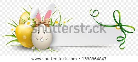 Paper Banner Green Ribbon Golden Easter Eggs Hare Stock photo © limbi007