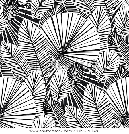 Negro vector aislado blanco geométrico Foto stock © blumer1979