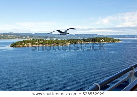 Oslo turista navio de cruzeiro natureza paisagem mar Foto stock © bdspn