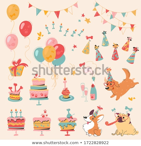 Birthday Party, Vector Child, Cone Hat and Garland Stock photo © robuart