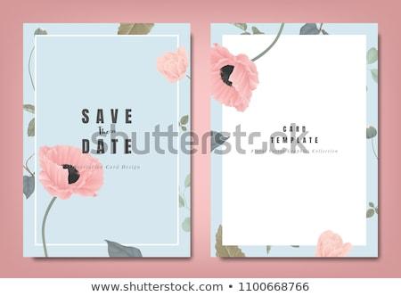 Eenvoudige bloem pastel natuur ontwerp schoonheid Stockfoto © serdechny