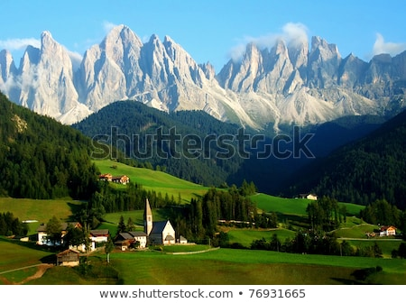 Montagne gamme alpes paysage vue herbe Photo stock © lichtmeister