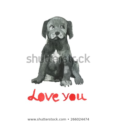Cane Corso Dog Breed Cartoon Retro Drawing Stock photo © patrimonio