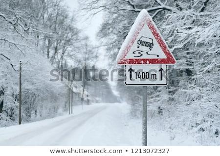 Sneeuw ijzig weg bos gevaarlijk achtergrond Stockfoto © leedsn