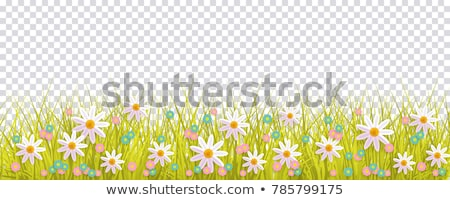 розовый · весенние · цветы · азалия · цветок · природы · свет - Сток-фото © jsnover