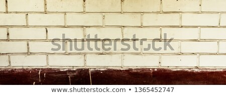 close view of a cobblestone in front of stack Stock photo © Melvin07