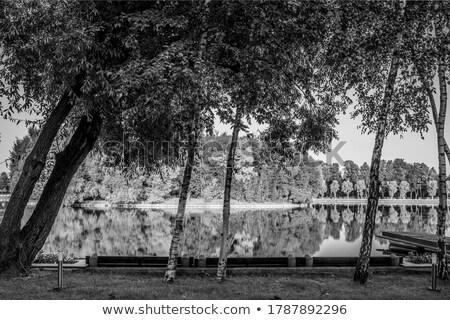 rústico · espejo · vintage · estilo · frontera · marco - foto stock © ruslanomega