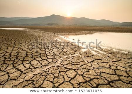 Dry Lake Stock photo © jamdesign