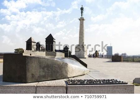 中世 · 牙城 · 丘 · ルーマニア · 壁 - ストックフォト © adamr