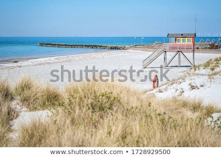 redding · toren · illustratie · strand · natuur · zee - stockfoto © elxeneize