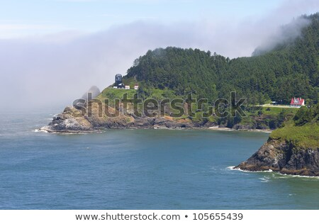 oregon coast and hacenta lighthouse stock photo © rigucci