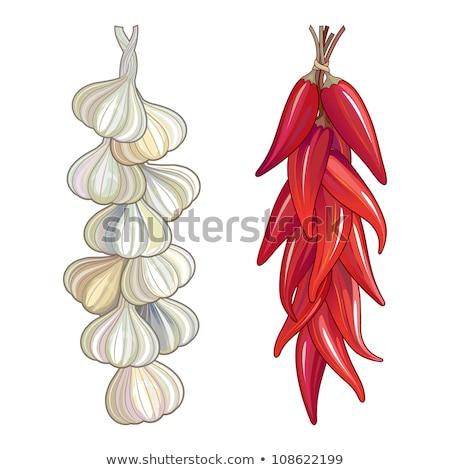 augurken · markt · groene · knoflook · vruchten - stockfoto © bertl123