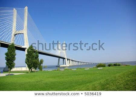 Vasco da Gama bridge and grenn grass Stock photo © vwalakte