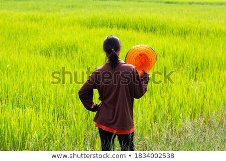 Couple stood in field Stock photo © photography33