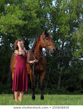 Atractivo caballo mujer retrato rojo Foto stock © konradbak