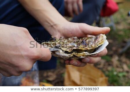 Raw Oysters Closeup Stock photo © dehooks