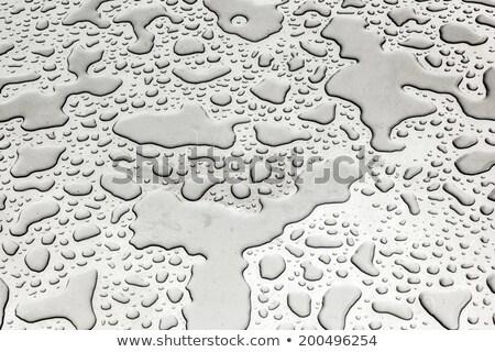 Water zilver metaal tabel harmonisch vorm Stockfoto © meinzahn