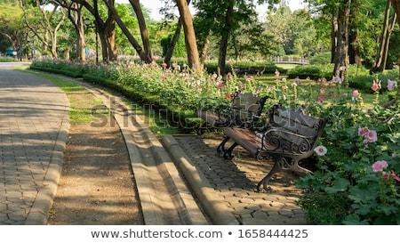 Publicznych ogrody zieleń kwiaty dekoracyjny Zdjęcia stock © scenery1