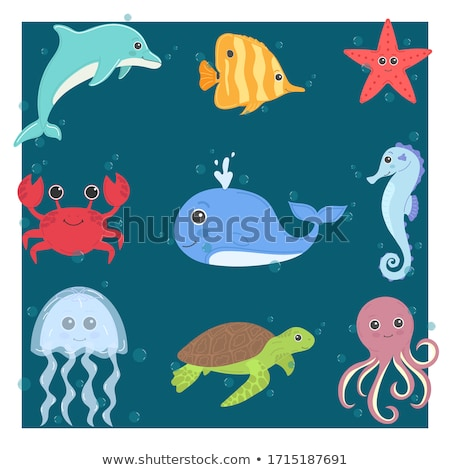 Denizanası deniz iki mavi güzellik okyanus Stok fotoğraf © anbuch
