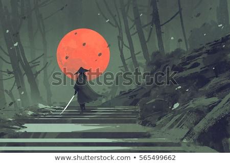 Stockfoto: Samurai · zwaarden · zonsondergang · man · achtergrond · silhouet