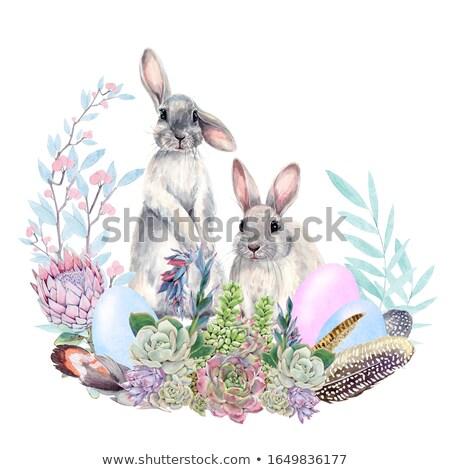 Conejo de Pascua pintado huevos de Pascua hierba primavera mariposa Foto stock © Ustofre9