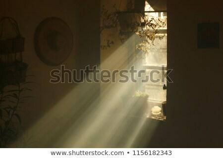Old Window and Light Stock photo © stevanovicigor