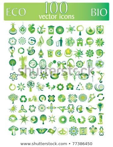 protection web internet green vector button icon design set stock photo © rizwanali3d