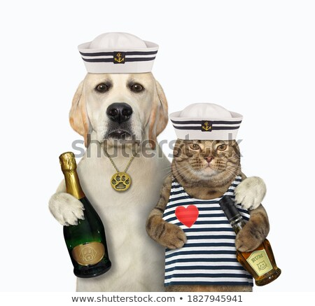 Sailor isolated with wine bottle  Stock photo © Elnur