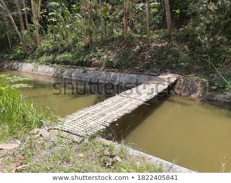 small bridge in indonesia stock photo © juhku