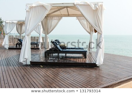 Leather beach chair in front of a pool stock photo © jrstock