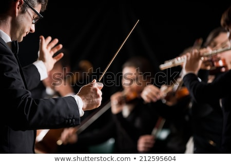 Violinista orquestra feminino foco música Foto stock © stokkete