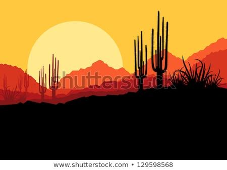 Sęp Kaktus pustyni ilustracja skrzydełka Zdjęcia stock © adrenalina