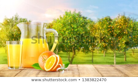 orange · jus · isolé · blanche · fruits - photo stock © goir