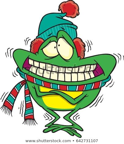 vector cartoon of winter frog stock photo © grivina