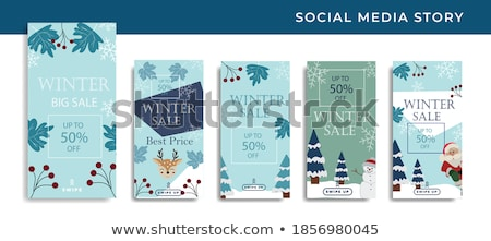 Inverno vendita logo set blu neve Foto d'archivio © romvo