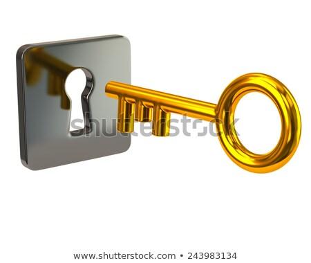 3d · illusztráció · ezüst · arany · ajtó · kulcsok · izolált - stock fotó © tussik