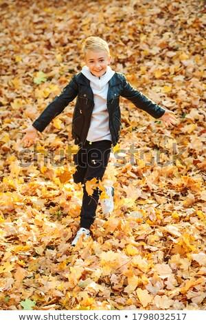 счастливым Kid мальчика осень парка ходьбе Сток-фото © dariazu