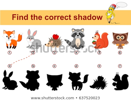 Find the correct shadow, game for kids - cute owl Stock photo © adrian_n