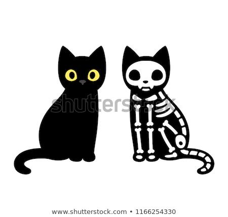 halloween · kedi · afiş · siyah · üzerinde - stok fotoğraf © olena