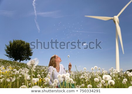 woman blowing dandelion at wind turbine Stock photo © IS2