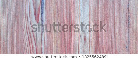interesting texture of wood plank surface Stock photo © taviphoto