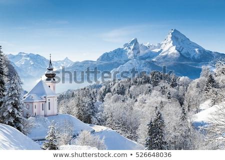 inverno · Berlim · grama · sol · paisagem · jardim - foto stock © benkrut