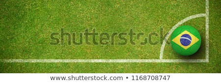 Football in brasil colours against soccer field plan  Stock photo © wavebreak_media
