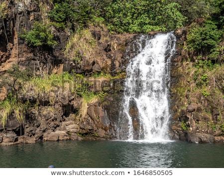 Pesante precipitazioni valle Hawaii USA foresta Foto d'archivio © dirkr