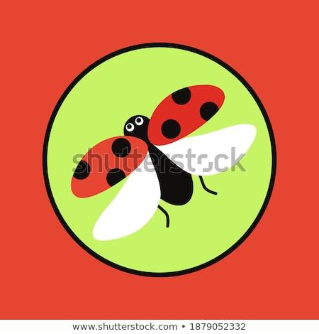 Küçük böcek imzalamak karikatür örnek beyaz Stok fotoğraf © cthoman