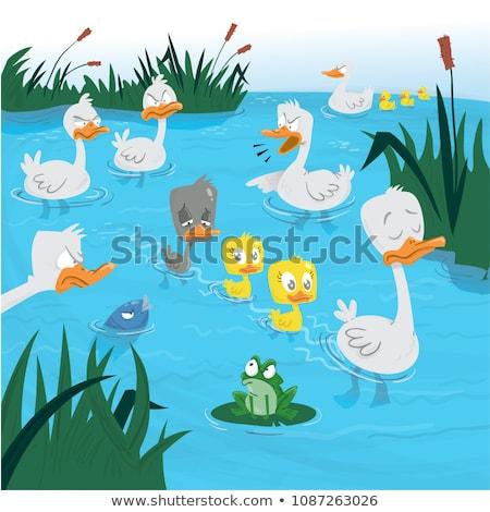 Karikatür öfkeli ördek yavrusu örnek küçük genç Stok fotoğraf © cthoman