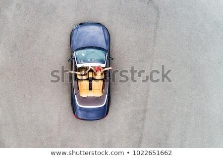 valósághű · cabrio · autó · fekete · vektor · vázlat - stock fotó © yurischmidt