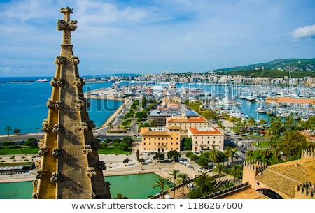 Aerial view Palma de Mallorca Cathedral and cityscape. Spain Stock photo © amok