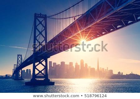 Oakland and San Francisco Twilight Skylines Illuminated with Holiday Lights. Stock photo © yhelfman