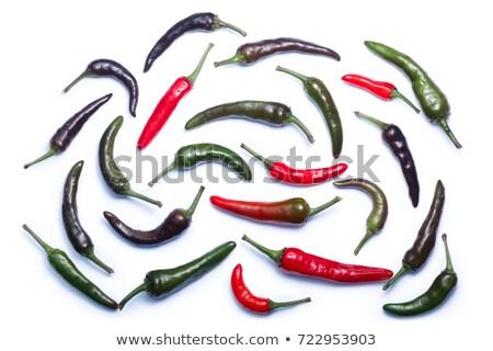 Lila pára Chile paprikák felső kilátás Stock fotó © maxsol7